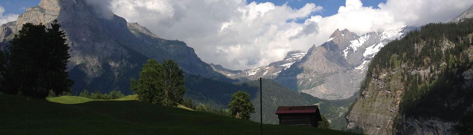 mountain-hillside-banner