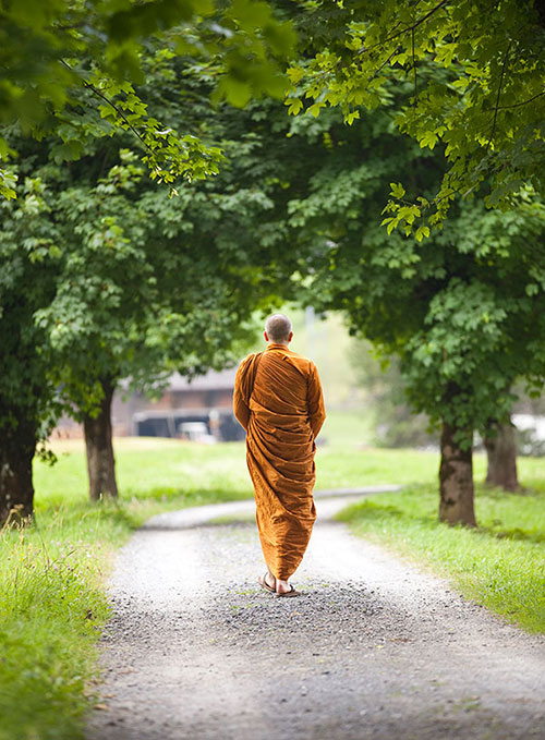 dhammapala-munk-walking-sm